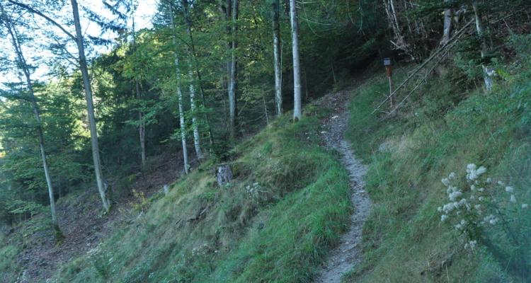 Kreuzweg Zauberwinkel keine Downhill-Racer-Strecke