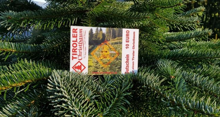 Regionale Christbäume als ideales Geschenk