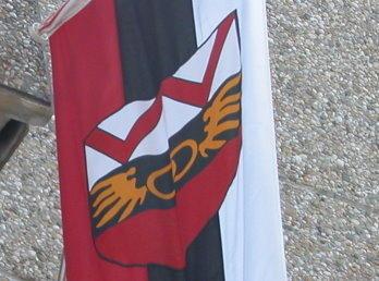 Wörgler Fahne
